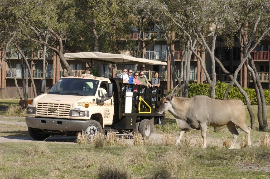 Wanyama Safari at Disney's Animal Kingdom Lodge