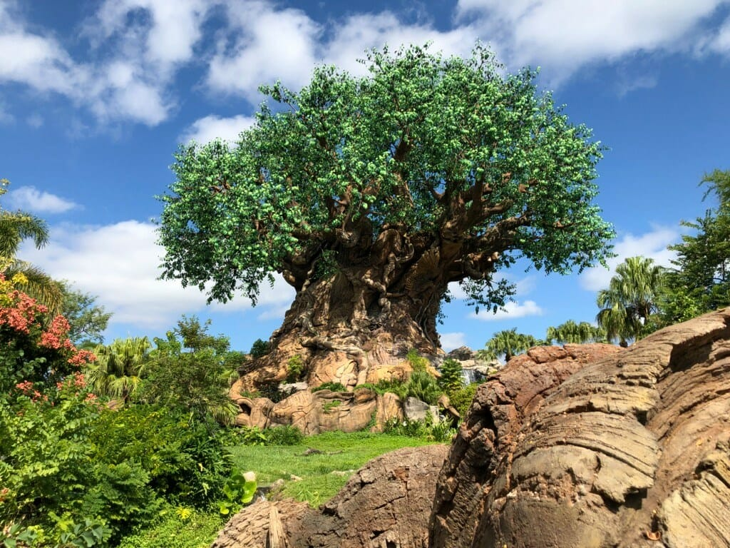 Disney's Animal Kingdom 101