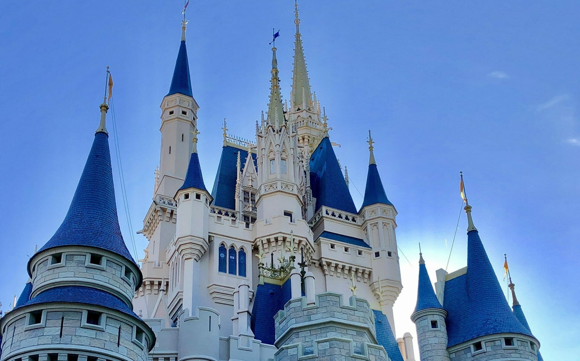 Walt Disney World Attractions For Expectant Mothers