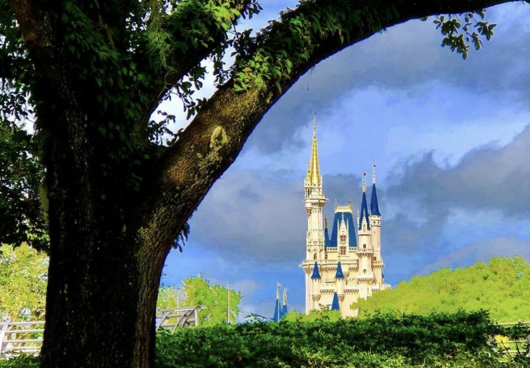 Disney's Magic Kingdom 101