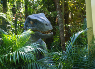 Jurassic Park Raptor Universal's Islands of Adventure