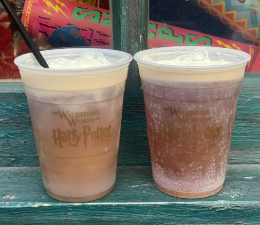 Wizarding World of Harry Potter Treats