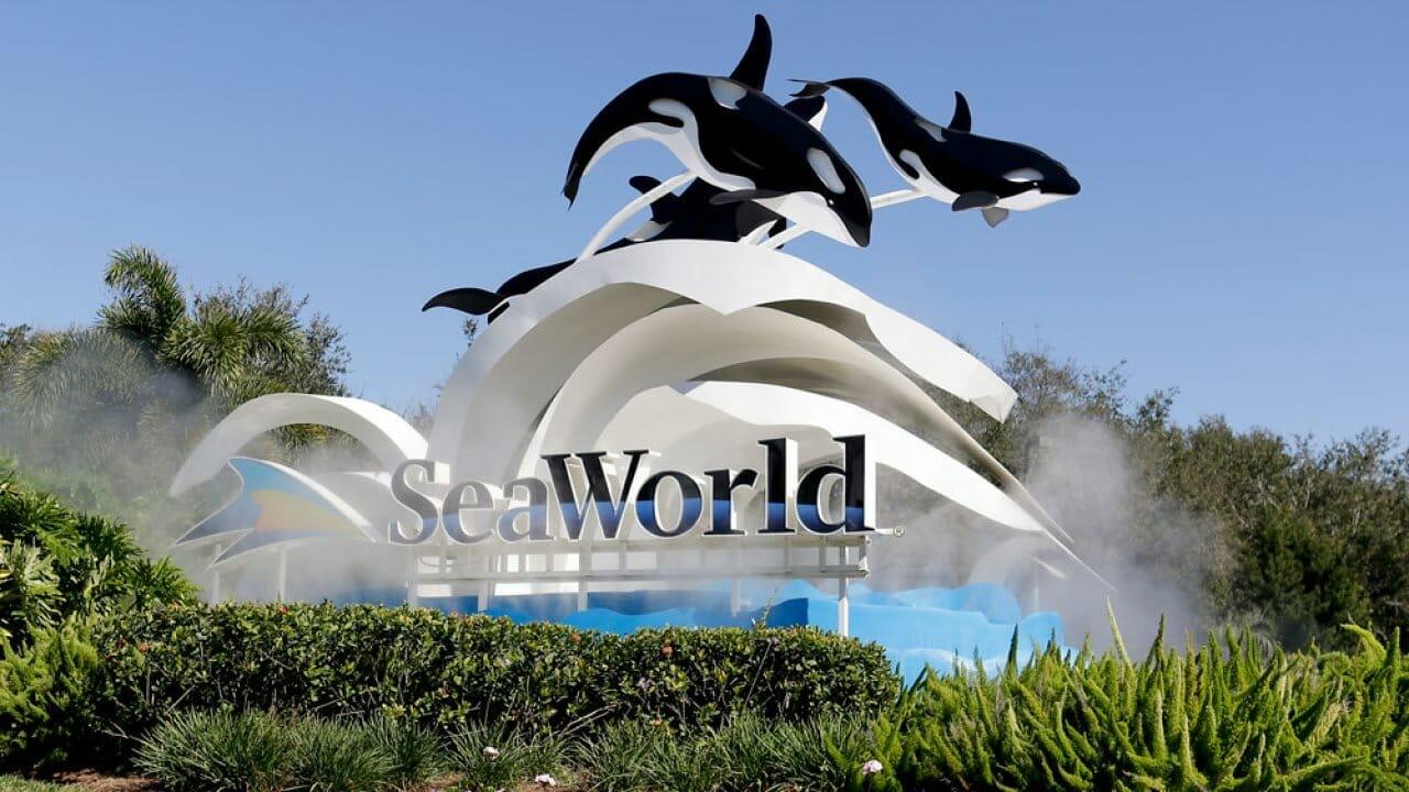 SeaWorld and Aquatica Orlando FREE Preschool Card
