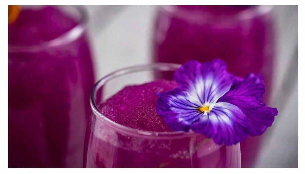 2020 Epcot International Flower & Garden Festival Kitchens
