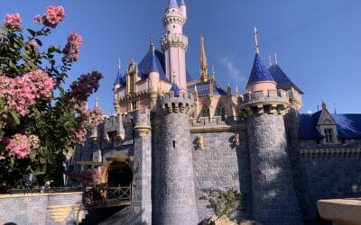 State of California Theme Park Reopening Guidelines