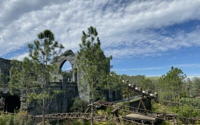 Hagrid's Magical Creatures Motorbike Adventure Added to Early Park Admission