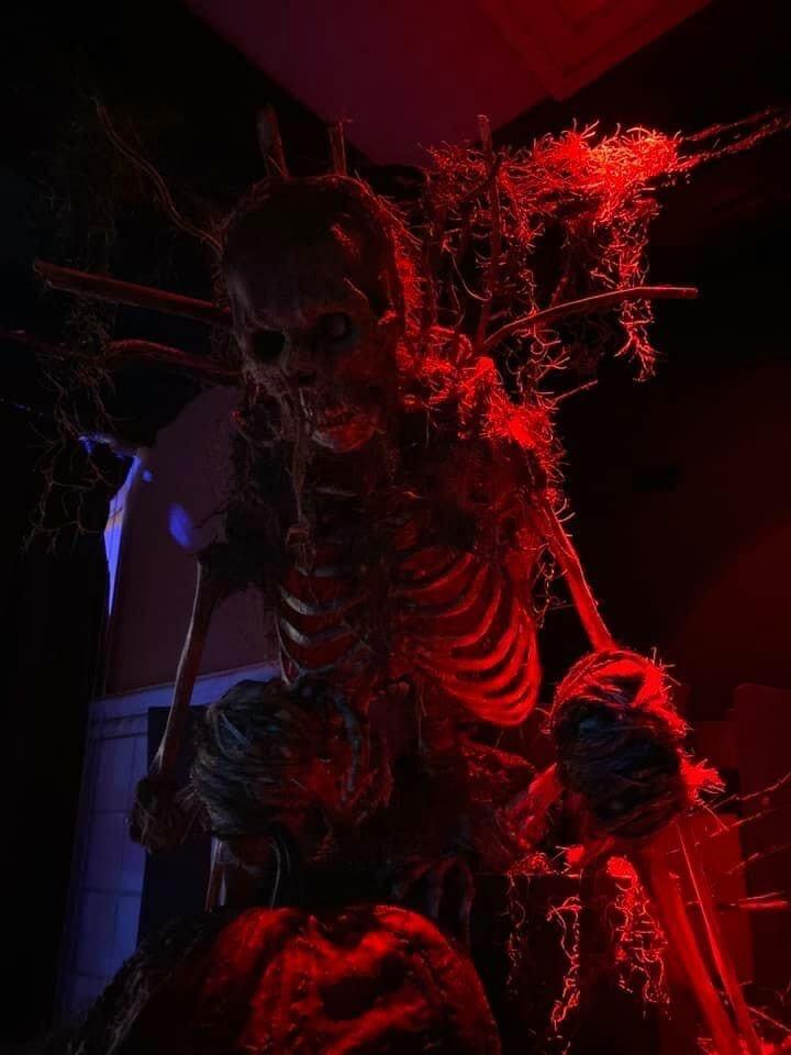 La Bamba Skeleton Bar Universal Orlando