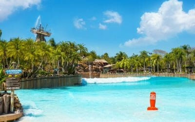 Walt Disney World Update on Water Park Reopening