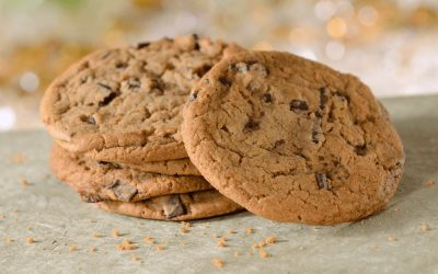 Chocolate Chip Cookies Recipe From The Grand Floridian Resort & Spa
