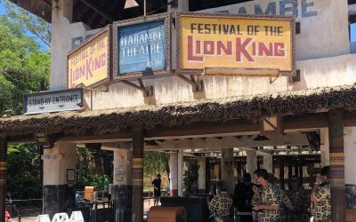The Festival of the Lion King Begins a Soft Opening at Animal Kingdom