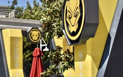 New Black Panther Meet & Greet For Avengers Campus at Disney California Adventure