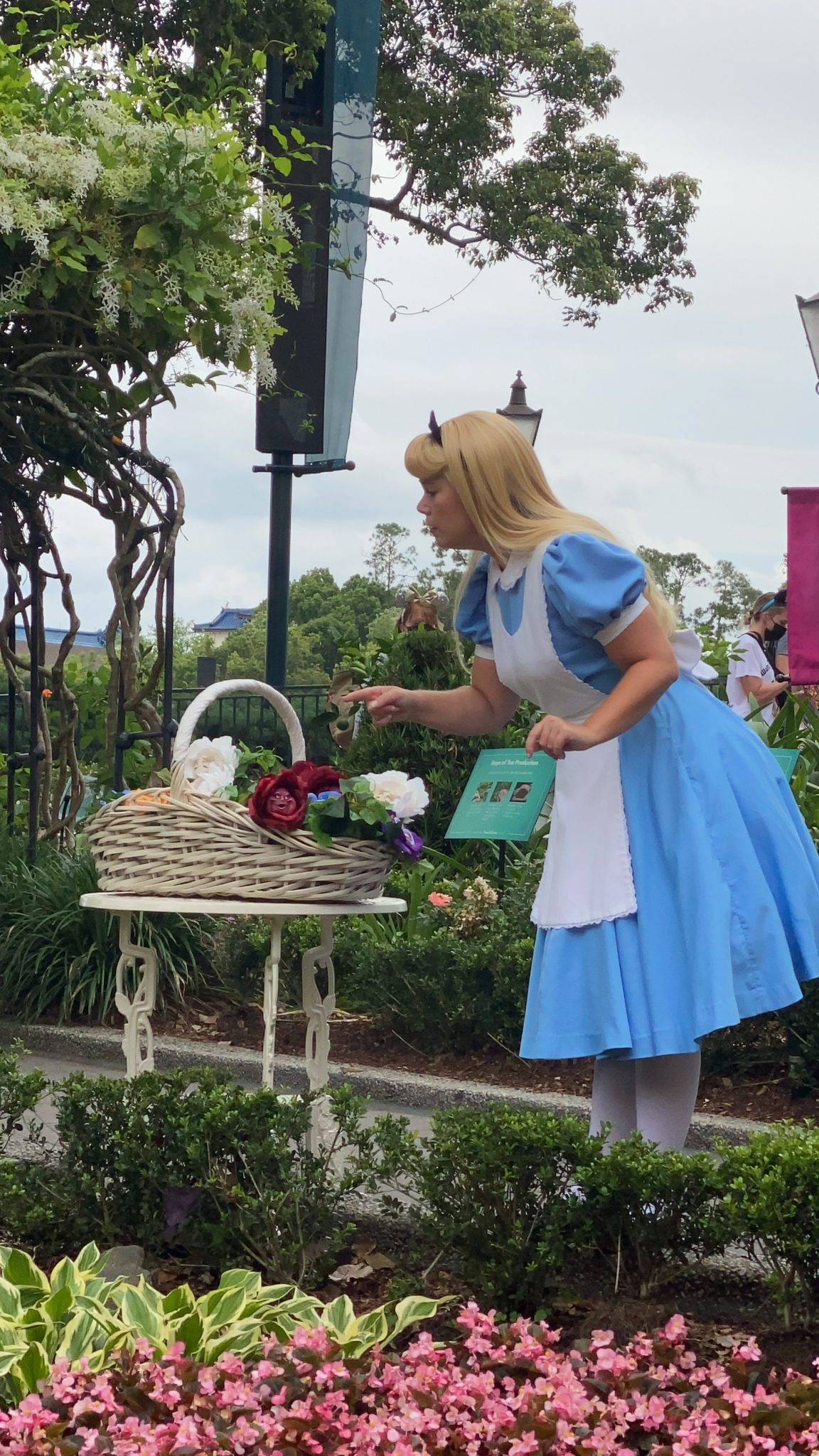 Where Can You Disney Characters at Walt Disney World Now- Alice Epcot