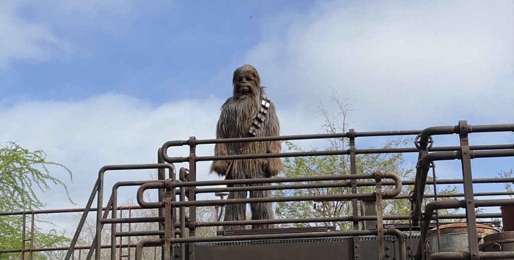 Where Can You Disney Characters at Walt Disney World Now- Star Wars