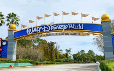 8 Great Reasons to Plan A Walt Disney World Vacation