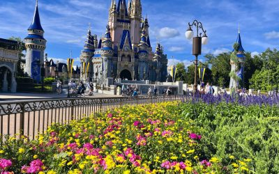 Magic Kingdom 101: Your Complete Guide
