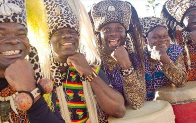 Tam Tam Drummers of Harambe to Return to Animal Kingdom